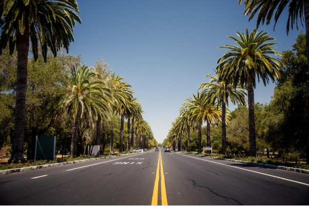 What makes Beverly Hills so special?